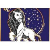 Liūtui (29)